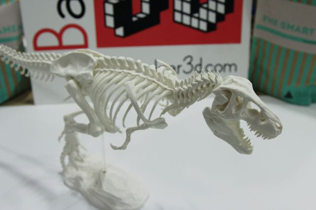 rex_3d_printer04