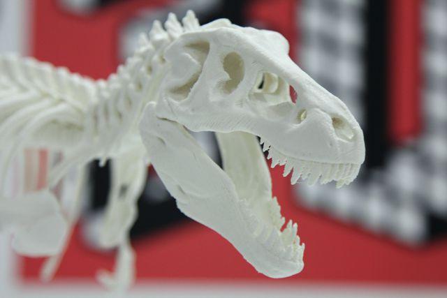 rex_3d_printer05
